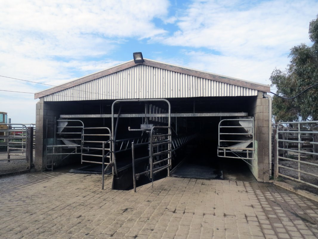 The milking parlour is a 2 x 20 swingover, covered with sheet piling. The largely hardened waiting area is completely situated 
