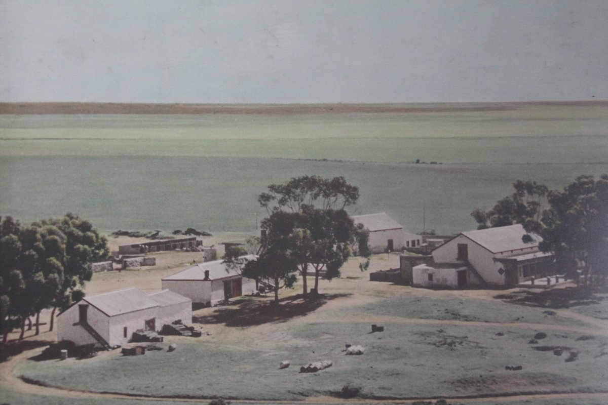 A historic photograph that hangs in the farm office shows what the farm yard looked like in 1953. Willem and Paul are the fourth generation of Bassons on Uilenkraal, while Coenraad represents the 5th generation.