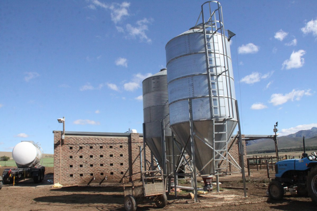 Silos containing dairy pellets in front of the 24-point swing over milking parlour. The capacity of each of the silos is approximately 15 ton. A tanker from Langeberg Cheese to whom De Kock Cloete sells his milk can be seen in the background.