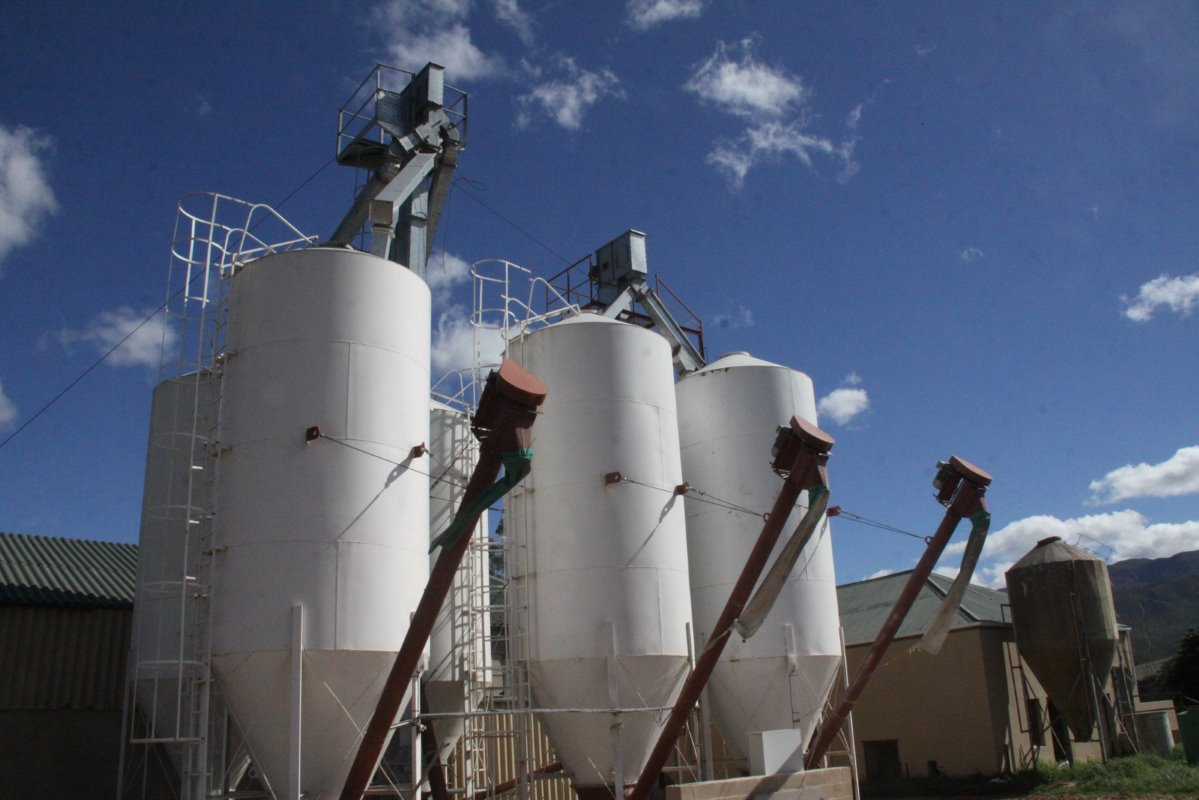 5 silos with a capacity of 25 tonnes each were erected on Loch Lotus to store ingredients for the total mixed rations.