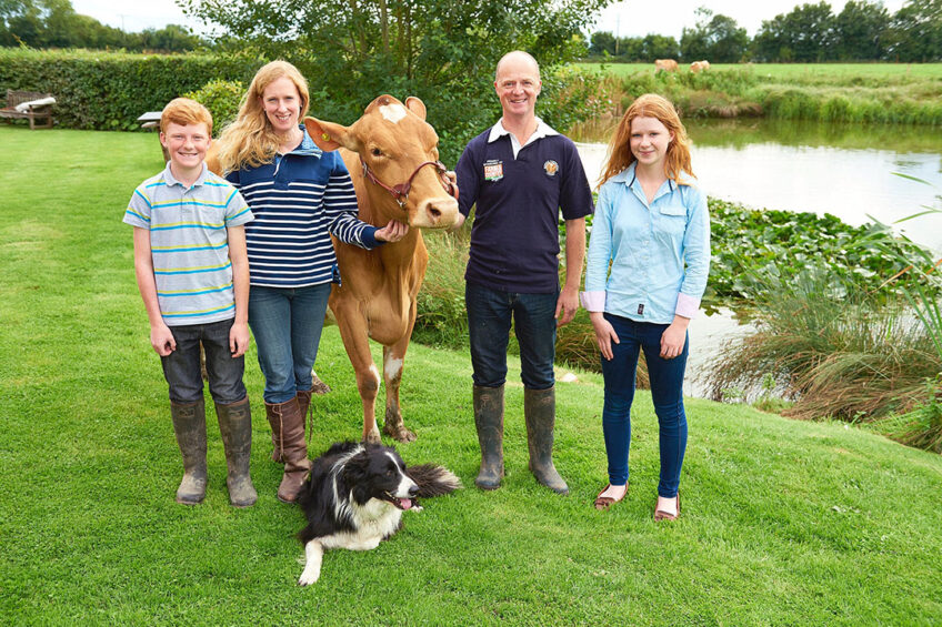 Katharine and Jason Salisbury with their children James and Emily, Edd the sheepdog and one of their pedigree Guernsey cows.  Photo: Salisbury family