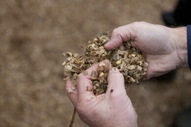 Identify and fix your mycotoxin contaminated silage