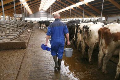 What defines a good farm advisor? Photo: Hans Prinsen
