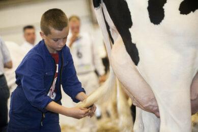 Is there genetic diversity left in Dutch HF cows? Photo: Koos Groenewold