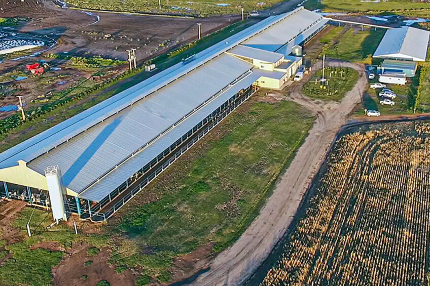 IMBO Agropecuaria milks 660 cows with six DeLaval milking robots. Milk production now averages 34 kg per day. In four years' time, that should be 40 kg. - Photo: Imbo Agropecuaria