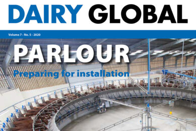 Dairy Global 5: Feed strategies and key parlour decisions