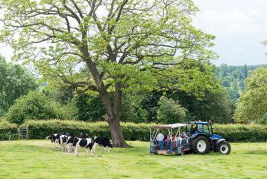 Farm tours at the dairy farm. Photo: The Bath Soft Cheese Company