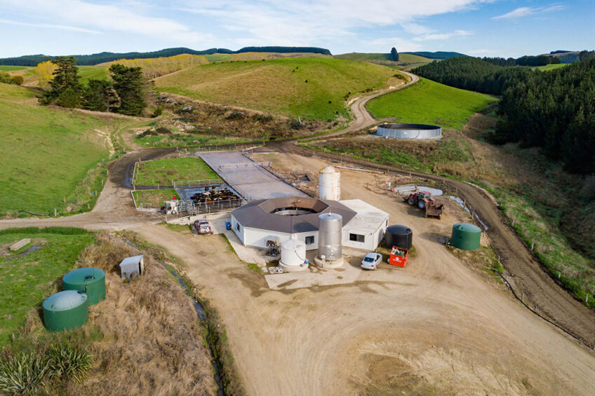 Aerial view of a 40 bale dairy shed complex on a undulating dairy farm in the South Canterbury region. Photo: Van Leeuwen Dairy Group