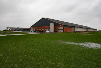 Danish dairy farmer: Growth without extra labour