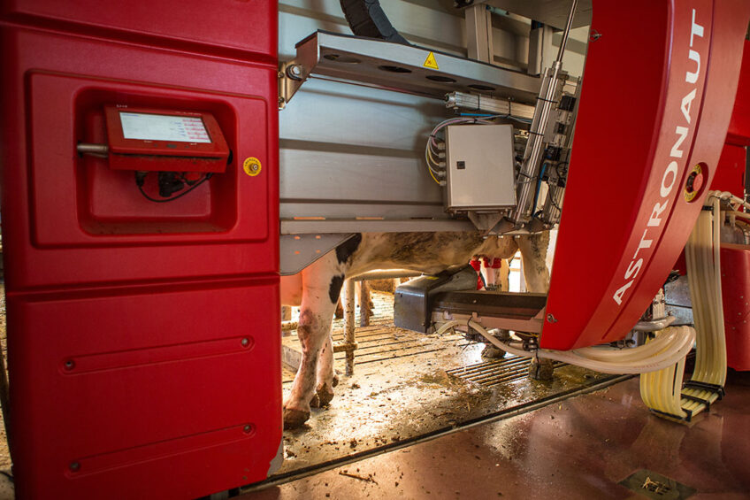German farmer puts money in robot, not parlour. Photo: Peter Roek