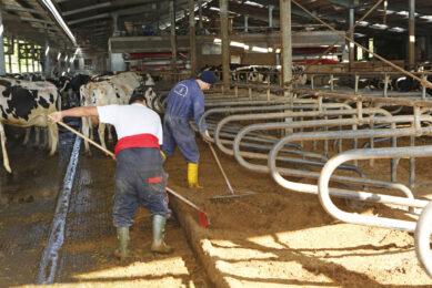 Italian dairy farmers  to focus on growth
