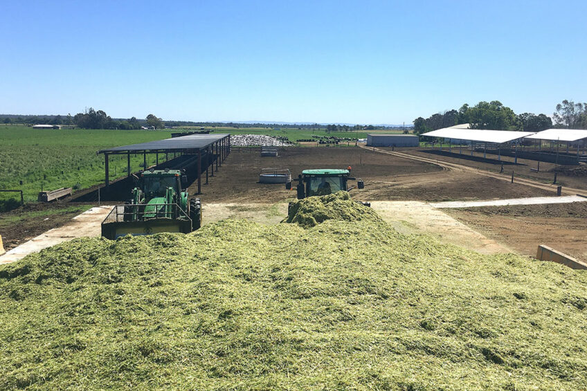 Silage is made to feed the cows through the winter months. Photo: Chris McCullough