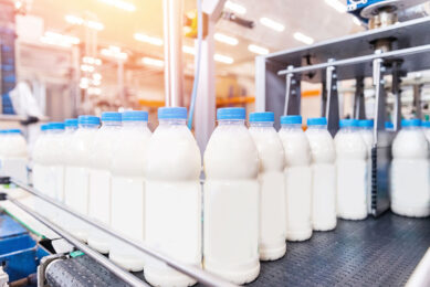 The American dairy market is seeing major export and growth opportunities, and milk production and domestic consumption are up this year. Photo: Shutterstock
