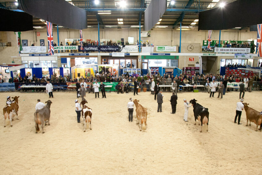 More than 300 cattle entries at UK dairy show 2017. Photo: UK Dairy Show