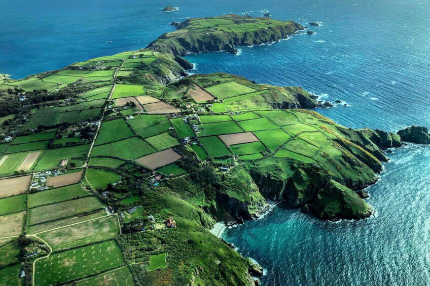 Island searching for new dairy farmer and cows. Photo: Supplied