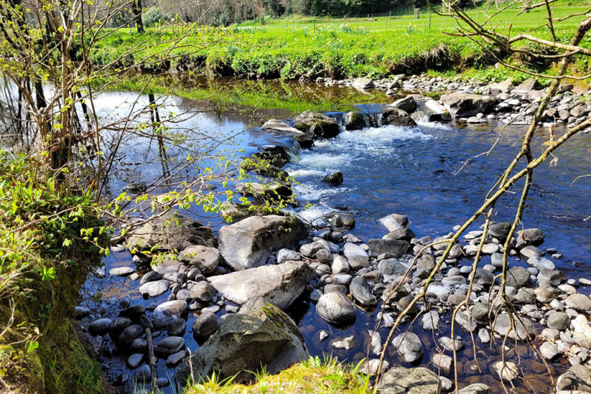 Water samples were taken in Ireland and Sweden to assess the phosphorus levels. Photo: Chris McCullough