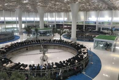 The Terminal. There are 4 exact same designed farms for 15,000 cows. The milking parlour building has 4 80 places rotaries, it s called  The Terminal  as it in many ways reminds people of an airport building. Photo: Snorri Sigurdsson