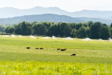 Photo: Bansen Farm