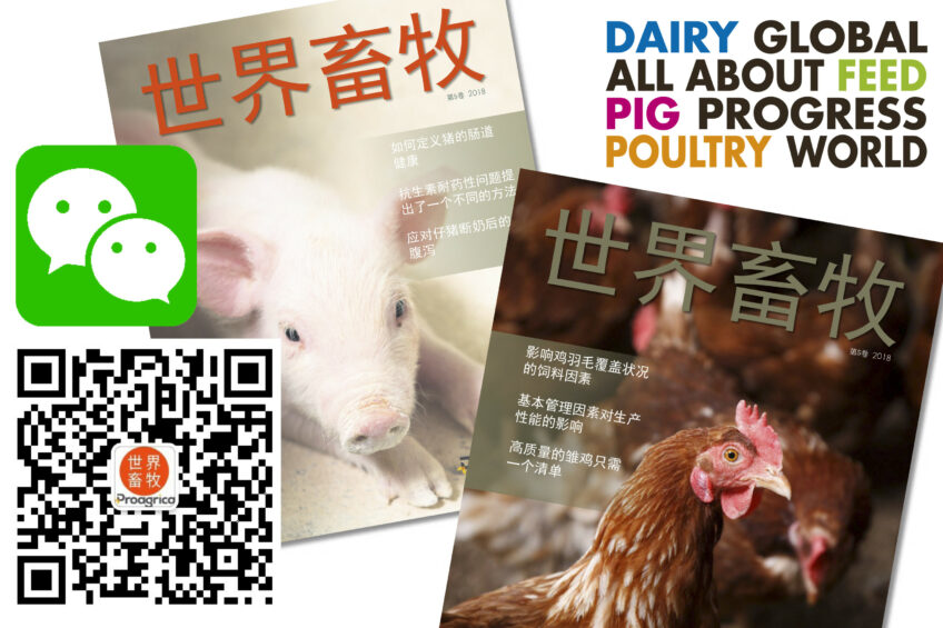 Dairy Global celebrates its WeChat launch in China