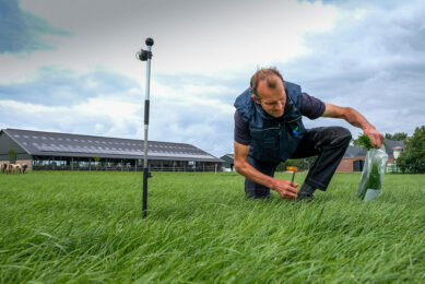By frequently taking a fresh grass sample, Wout Huijzer can ensure that the protein level in the pellet is adjusted based on this analysis. Photo: Jan Willem van Vliet