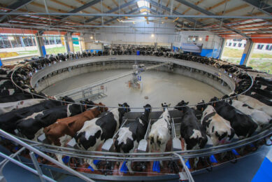 Dairy Global to host seminar on Smart Dairy Farming
