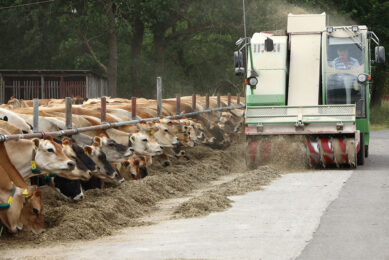 The pasturing cows are fed twice a day with a feedmixer. 3 The group at the second site has a paved feeding place next to the milking parlour of about 100 metres long and 20 metres wide.  Photos: Henk Riswick