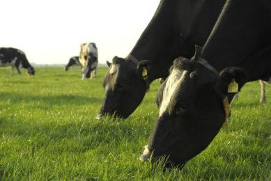 Watch the spring nutrient gap. Photo: RBI