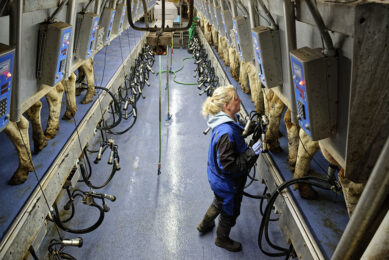 """Don t be tempted to cut corners; low bactoscans and cell counts make an important contribution to the milk price achieved, so it is in your interest to avoid common mistakes by taking action,"""" says Alison Cox, global applications specialist, Deosan. Photo: Lex Salverda"""