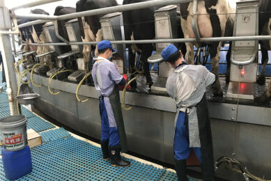 Today the Chinese farms are big and mechanised. Photo: CDMTCC