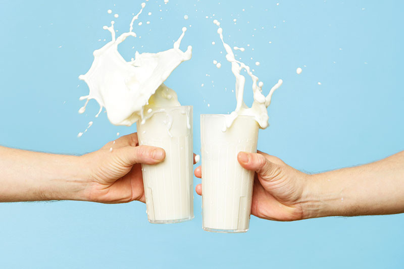 The VIP (very important protein) for dairy cows. Photo: Biomin