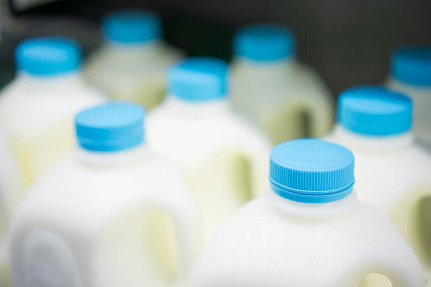 Ukraine dairy industry struggles with oversupply