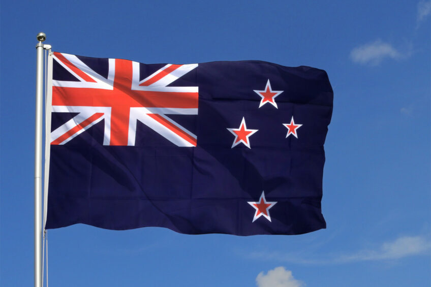 Mycoplasma NZ: 126,000 cows to be culled. Photo: Royal Flags