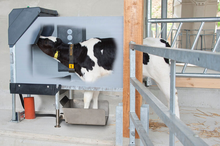 Holm & Laue s HygieneStation mixes and prepares a fresh milk diet, at the right temperature, for each individual calf, and automatically cleans all tubes and hoses. Photo: Holm & Laue