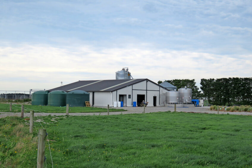NZ farm maximising milk production. Photo: Robert Bodde