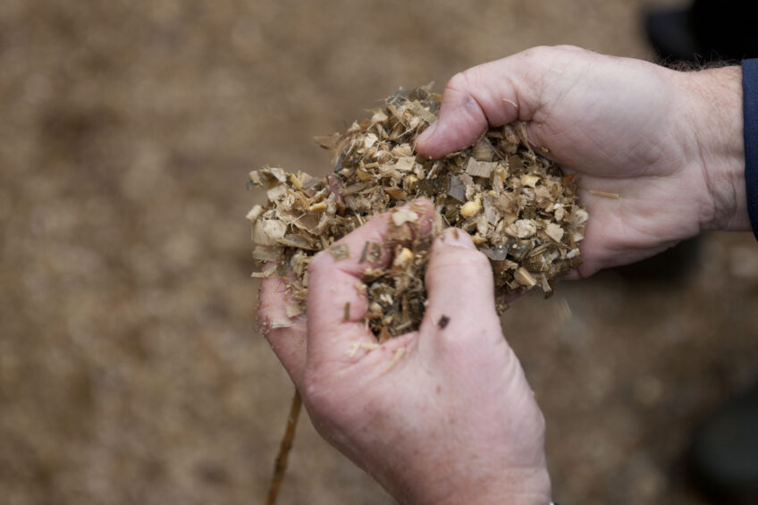 Mycotoxin risks for corn silage