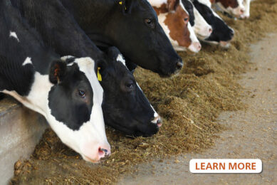 Do you understand the risks from mycotoxin contamination in feed?