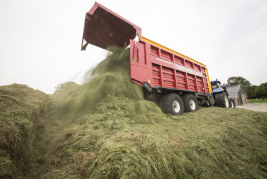 Central silage for 11 Dutch dairy farms