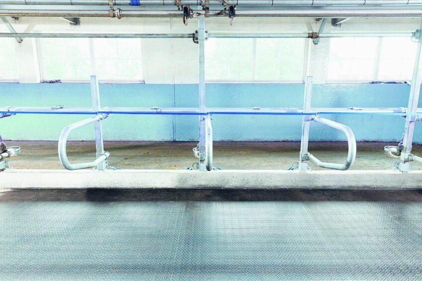 Cow matrass survived 500,000 step test