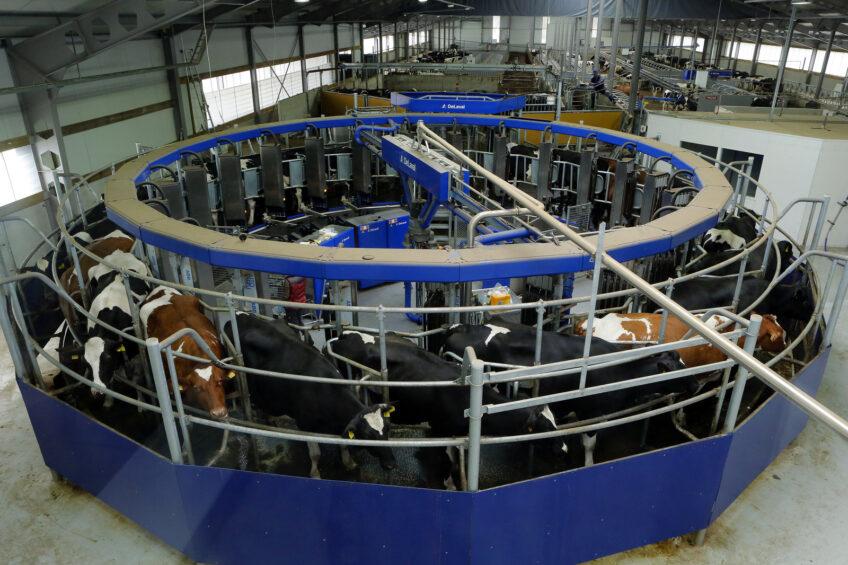 Finns invest €5 million to optimise dairy farm