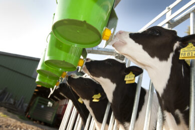 The main drivers for dairy profitability