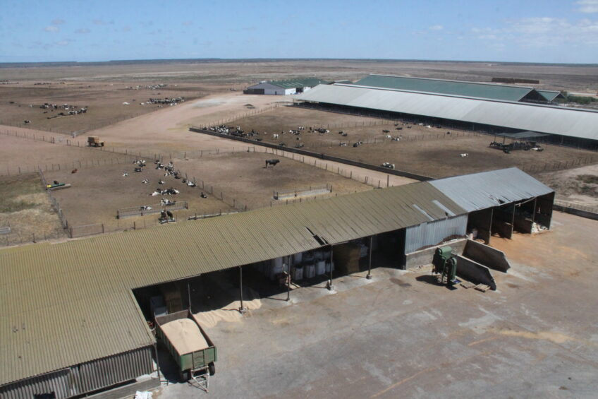 South African milk farm invests millions