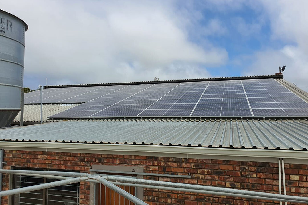 Solar panels have already achieved a 40% drop in conventional energy use. Photo: Lizl Kuyler